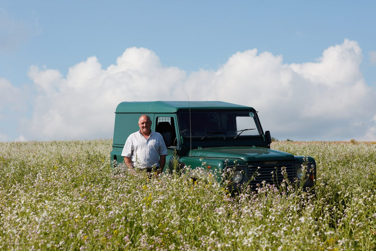 What birds can you see at Wiston Estate? Q&A: Mark Ansell, Conservation and Stewardship